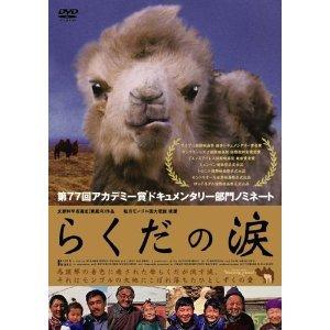 ラクダの涙.jpg