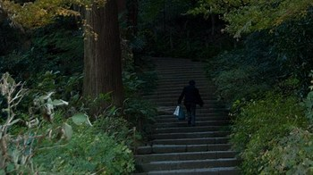 階段と大きな木と登って行く人.jpg