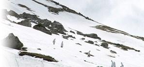 雪滑り.jpg